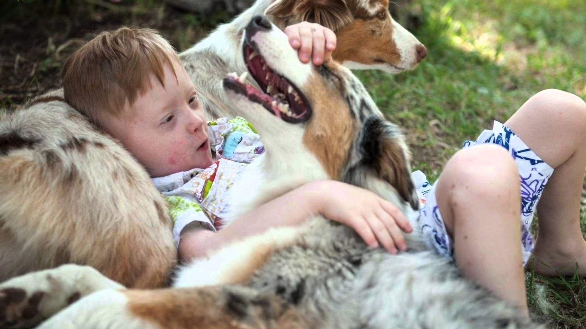 Животные-целители: пет-терапия для детей с ДЦП